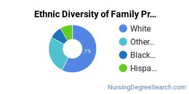 Family Practice Nursing Majors in WA Ethnic Diversity Statistics