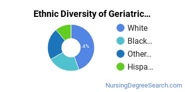 Geriatric Nursing Majors in NJ Ethnic Diversity Statistics
