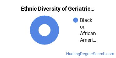 Geriatric Nursing Majors in TN Ethnic Diversity Statistics