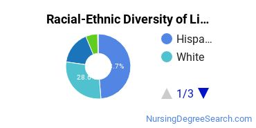 Racial-Ethnic Diversity of Licensed Practical/Vocational Nurse Training Associate's Degree Students