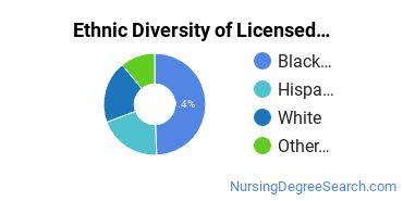 Licensed Practical Nursing Majors in CT Ethnic Diversity Statistics