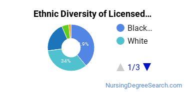 Licensed Practical Nursing Majors in FL Ethnic Diversity Statistics