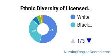 Licensed Practical Nursing Majors in MD Ethnic Diversity Statistics
