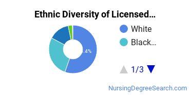 Licensed Practical Nursing Majors in MA Ethnic Diversity Statistics