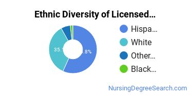 Licensed Practical Nursing Majors in NM Ethnic Diversity Statistics