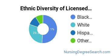 Licensed Practical Nursing Majors in RI Ethnic Diversity Statistics