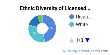 Licensed Practical Nursing Majors in TX Ethnic Diversity Statistics
