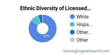 Licensed Practical Nursing Majors in UT Ethnic Diversity Statistics