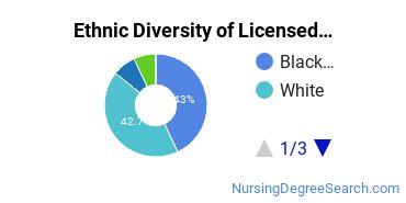 Licensed Practical Nursing Majors in VA Ethnic Diversity Statistics