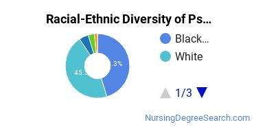 Racial-Ethnic Diversity of Psychiatric/Mental Health Nursing Doctor's Degree Students