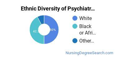 Mental Health Nursing Majors in GA Ethnic Diversity Statistics