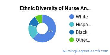 Nurse Anesthetist Majors in CA Ethnic Diversity Statistics