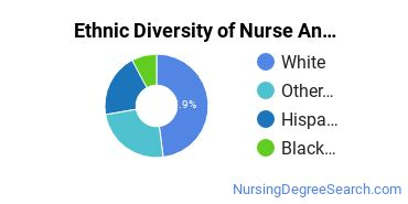 Nurse Anesthetist Majors in FL Ethnic Diversity Statistics