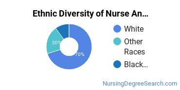 Nurse Anesthetist Majors in GA Ethnic Diversity Statistics