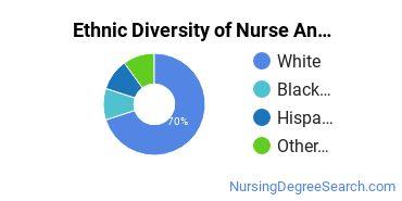 Nurse Anesthetist Majors in IA Ethnic Diversity Statistics