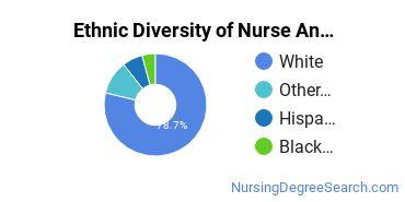 Nurse Anesthetist Majors in KS Ethnic Diversity Statistics