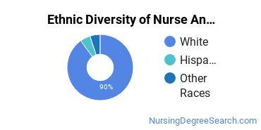 Nurse Anesthetist Majors in ME Ethnic Diversity Statistics