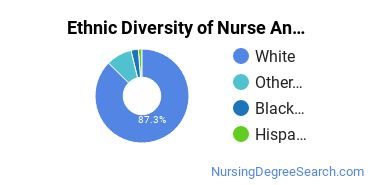 Nurse Anesthetist Majors in MI Ethnic Diversity Statistics