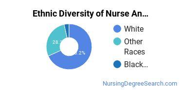 Nurse Anesthetist Majors in MN Ethnic Diversity Statistics