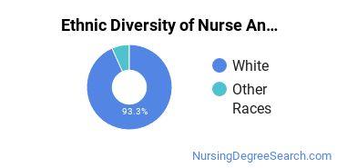 Nurse Anesthetist Majors in NE Ethnic Diversity Statistics