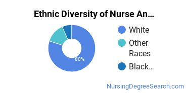 Nurse Anesthetist Majors in NY Ethnic Diversity Statistics