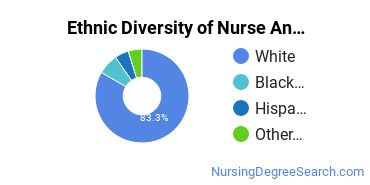 Nurse Anesthetist Majors in NC Ethnic Diversity Statistics