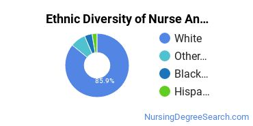 Nurse Anesthetist Majors in OH Ethnic Diversity Statistics