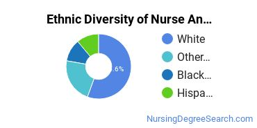 Nurse Anesthetist Majors in OR Ethnic Diversity Statistics