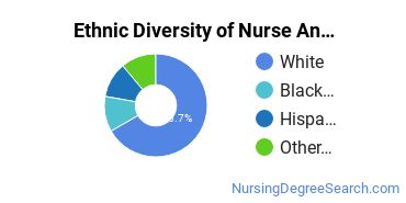 Nurse Anesthetist Majors in RI Ethnic Diversity Statistics