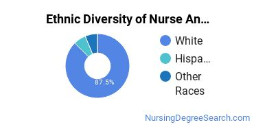 Nurse Anesthetist Majors in UT Ethnic Diversity Statistics