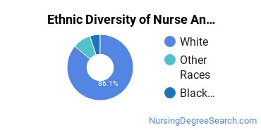 Nurse Anesthetist Majors in VA Ethnic Diversity Statistics