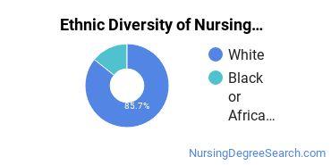 Nurse Midwifery Majors in DC Ethnic Diversity Statistics