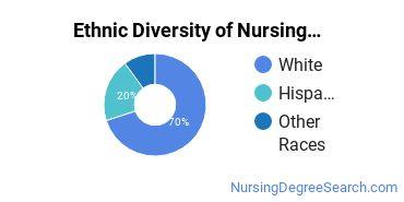 Nurse Midwifery Majors in GA Ethnic Diversity Statistics