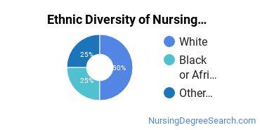 Nurse Midwifery Majors in MI Ethnic Diversity Statistics