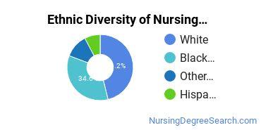 Nurse Midwifery Majors in NY Ethnic Diversity Statistics