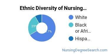 Nurse Midwifery Majors in VA Ethnic Diversity Statistics