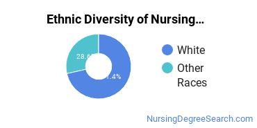 Nurse Midwifery Majors in WA Ethnic Diversity Statistics