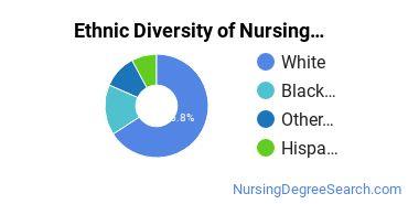 Nursing Administration Majors in AL Ethnic Diversity Statistics