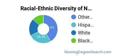 Racial-Ethnic Diversity of Nursing Administration Associate's Degree Students