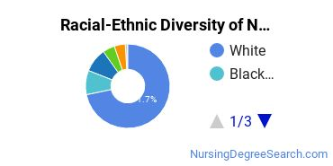 Racial-Ethnic Diversity of Nursing Administration Students with Bachelor's Degrees
