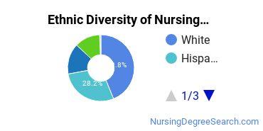 Nursing Administration Majors in CA Ethnic Diversity Statistics