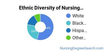 Nursing Administration Majors in GA Ethnic Diversity Statistics