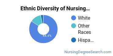 Nursing Administration Majors in ID Ethnic Diversity Statistics