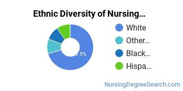 Nursing Administration Majors in IL Ethnic Diversity Statistics