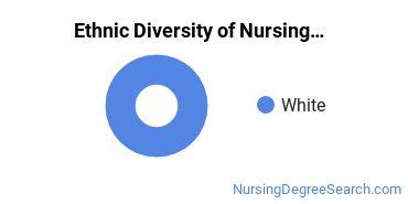Nursing Administration Majors in IA Ethnic Diversity Statistics