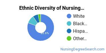 Nursing Administration Majors in KS Ethnic Diversity Statistics