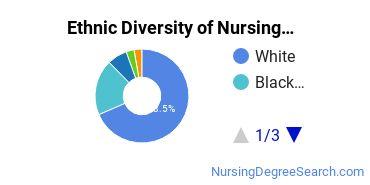 Nursing Administration Majors in MD Ethnic Diversity Statistics