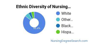Nursing Administration Majors in MA Ethnic Diversity Statistics