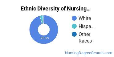 Nursing Administration Majors in NE Ethnic Diversity Statistics