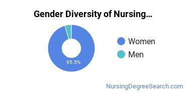 Nursing Administration Majors in NE Gender Diversity Statistics